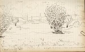 La bataille du 28 août vue par Maurice Bedel