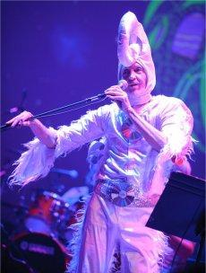 Gong Avec Daevid Allen Continental Circus